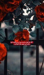 عکس نوشته امیدبخش 15