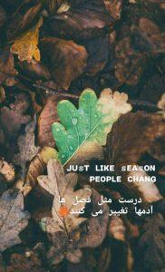عکس نوشته تیکه دار38
